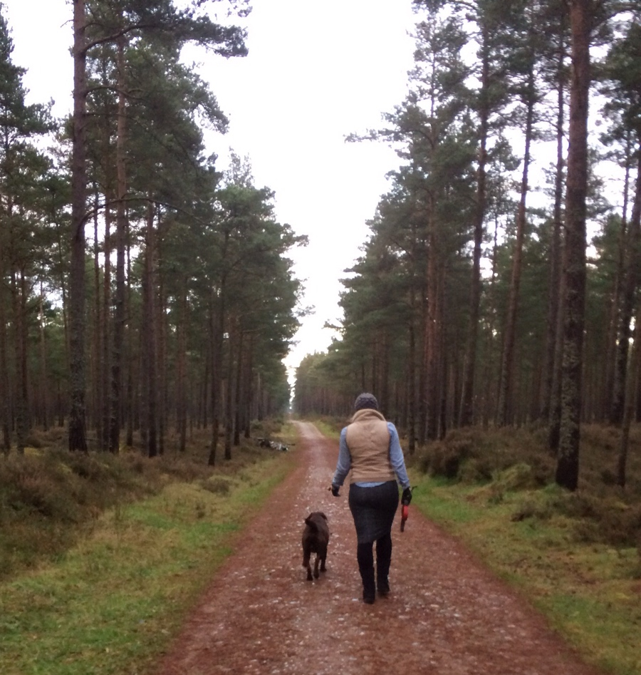 Walkies-ootd-Lossiemouth-forest