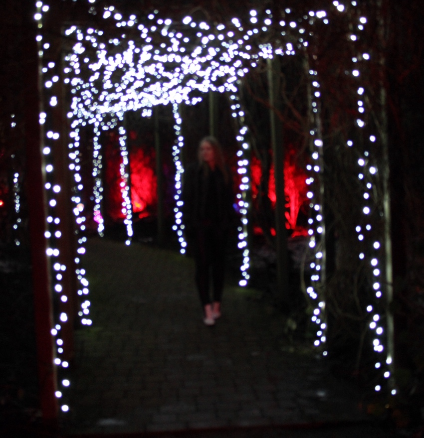 Electric-gardens-Glasgow-sparkly-lights-arch