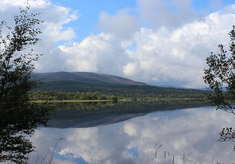 Living-in-a-Boxx-Cairngorms-log-cabin-loch-kinard